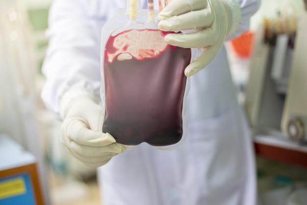 O que é medula óssea? - Hospital Nossa Senhora da Graça
